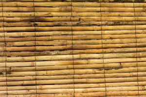 bambou jaune pour le fond photo