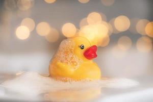 lumières de bokeh de canard jaune