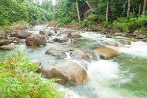 ruisseau coulant de la montagne photo
