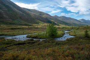 ruisseau près des montagnes photo