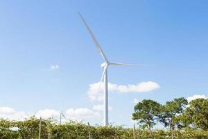 éolienne pour produire de l'énergie photo