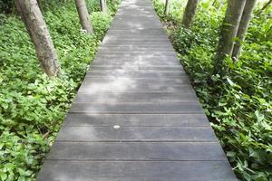 pont en bois dans un parc en thaïlande