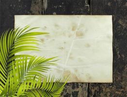 feuilles de palmier avec du papier rustique