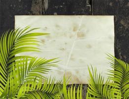 vieux papier avec des feuilles de palmier