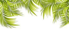 cadre de feuille vert vif