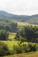 collines et terres agricoles en thaïlande
