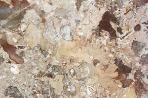 plan de travail en marbre brun photo