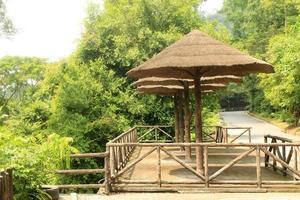 pavillon de chaume de bambou photo