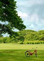 vélo rouge dans l'herbe verte