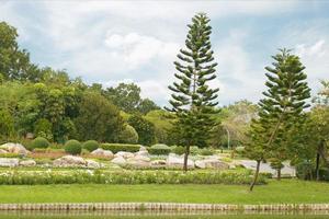jardin paysager extérieur avec étang photo