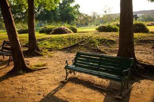 banc dans le parc photo
