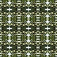 Fond abstrait symétrique d'arbre en miroir