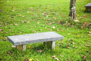 banc de pierre sur la pelouse