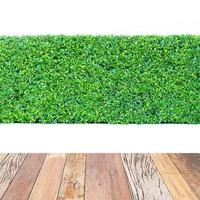 haie verte et table en bois isolée photo