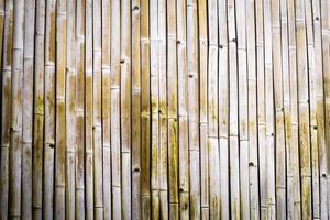 texture de bambou sec photo