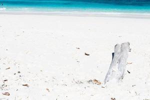bois sur la plage en thaïlande