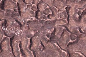 surface en pierre robuste photo