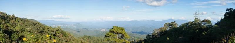 panorama de la forêt en thaïlande photo