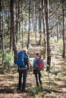 randonnée couple randonnée dans la forêt de pins photo