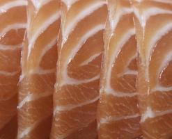 gros plan, de, saumon