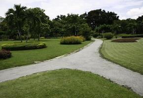 voie en béton dans le jardin