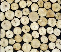texture ronde en bois