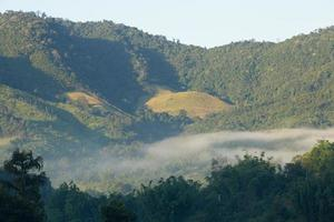 montagnes couvertes de brouillard en Thaïlande photo