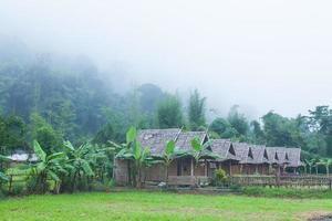 cabanes dans la forêt en thaïlande photo
