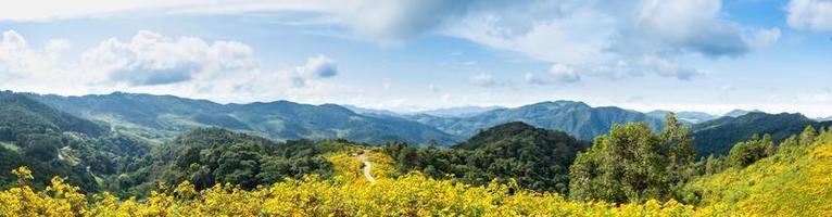 champ panoramique de fleurs, montagnes et ciel