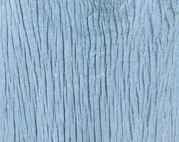 fond de bois bleu photo