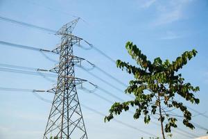 poteaux électriques et arbre photo