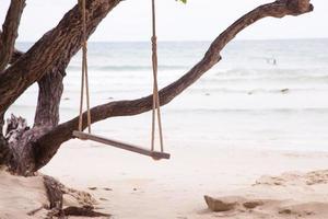 balancer sur un arbre photo