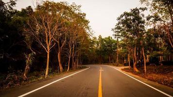 route sinueuse à travers la forêt