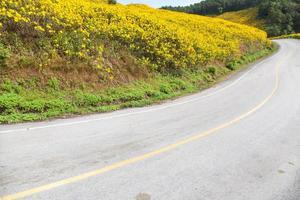 route courbe sur une montagne en thaïlande photo
