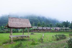 cabane sur le terrain