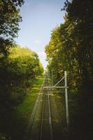 vue en perspective des voies ferrées photo