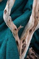 branche sur une couverture