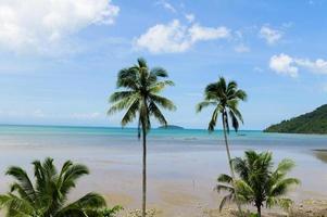 plage d'été en thaïlande