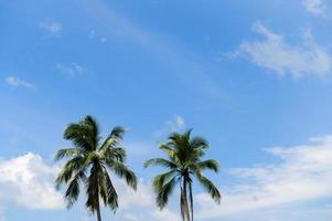 plage d'été en thaïlande photo