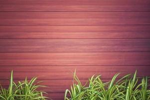 texture du bois avec des plantes vertes photo