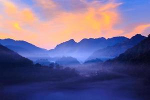 Brume du matin à la terrasse de thé à doi angkhang à chiangmai, thaïlande photo