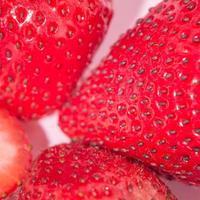 Tranches de fraise isolé sur fond rose, concept de couleur pop art photo