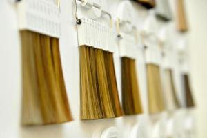 palette de couleurs de cheveux photo