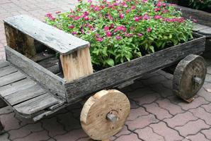 fleurs en wagon photo