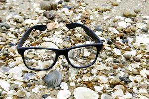 lunettes sur coquillages