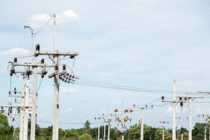 salopettes d'électricien travaillant en hauteur et dangereuses photo