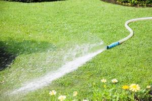 eau pulvérisée sur la pelouse photo
