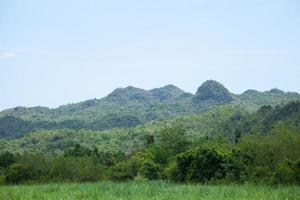 montagnes et forêts