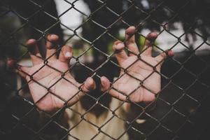 main avec clôture métallique, ne ressentant aucune liberté photo