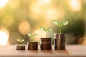 arbre qui pousse sur une pile de pièces et fond de nature verte floue, concept de croissance de l'argent et concept de réussite commerciale